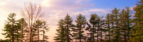 Indiana sunset on pond