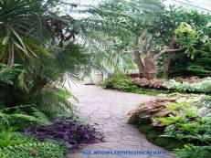 Wilder Park Conservatory path
