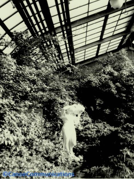 Lincoln Park Conservatory statue