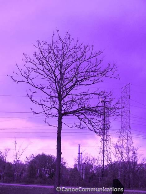 purple stormy sky
