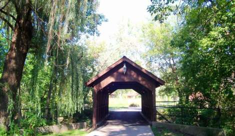 trees and covered bridge