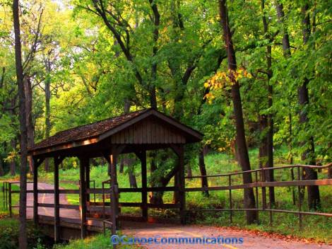 covered bridge and trees