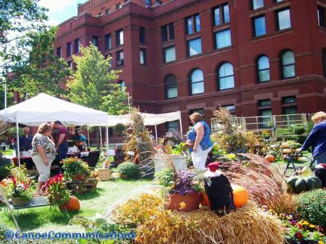 flower market at Kane County Courthouse