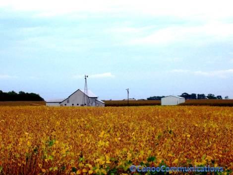farm on Route 31