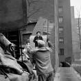 Vivian Maier, mover