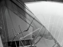 black and white atrium