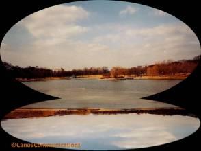Capitol Landscape