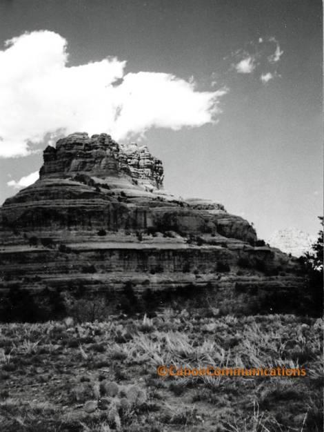 black and white desert landscape