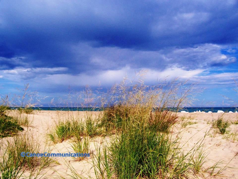 Illinois Dunes State Park