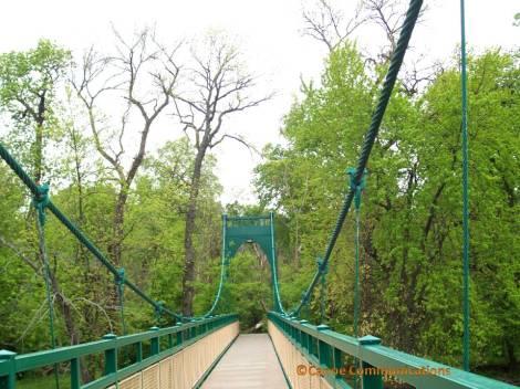 green suspension bridge