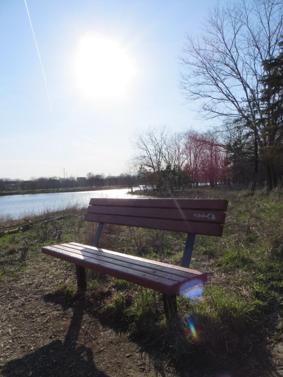 lakeside park bench