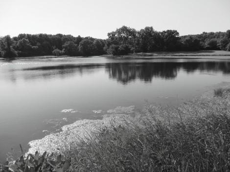 lake landscape bw