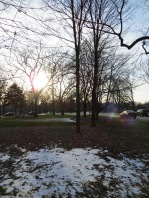 snow in a park