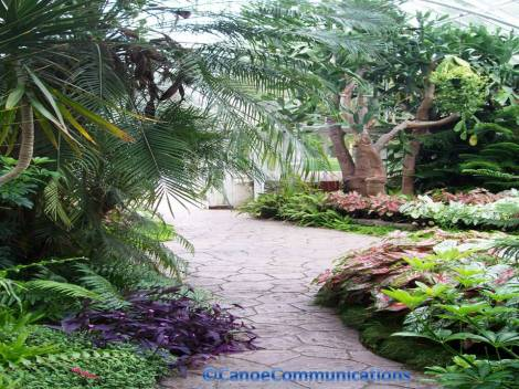 inside Wilder Park Conservatory