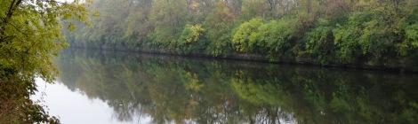 waterside woods