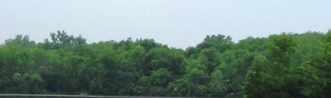 summer inlet