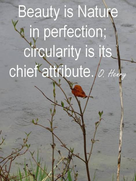 Beauty is nature in perfections; circularity is its chief attribute.