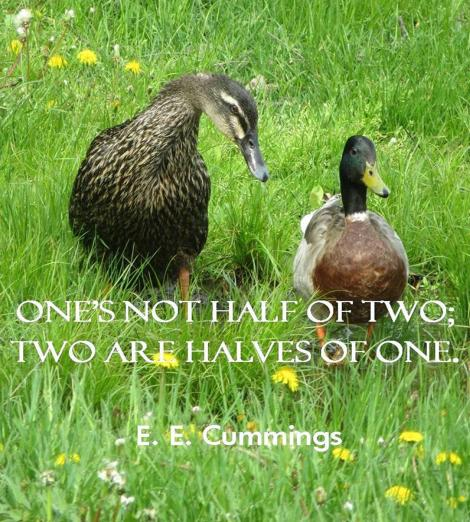One's not half of two; two are halves of one. E. E. Cummings