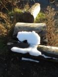 snow on a log