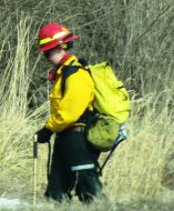 trained park employee sets controlled burn